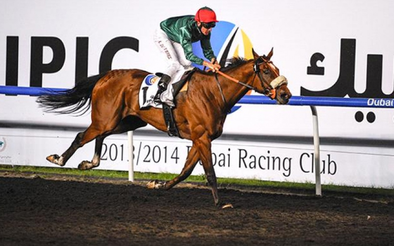 IPIC's Racing at Meydan Event